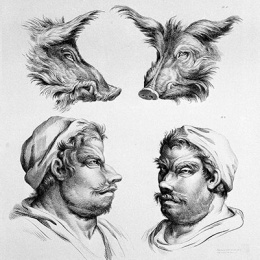 03-charles-le-brun-physiognomy-humans-evolved-post