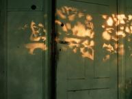 Vom Verschwinden und Erscheinen – Über das Ephemere in der Fotografie